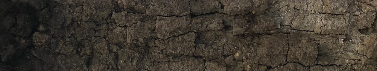 Applied Soil Ecology Lab